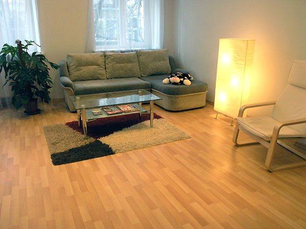 Nice Spacious One Bedroom Flat Near St Sophia Cathedral Id 16 One Bedroom Kyiv